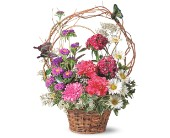 Birthday Butterflies in Yonkers NY, Beautiful Blooms Florist