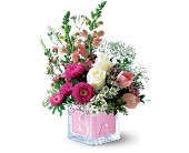 Teleflora's Baby Block (Girl) in Houston TX, Clear Lake Flowers & Gifts