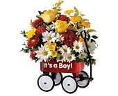 Teleflora's Baby's First Wagon - Boy in Houston TX, Village Greenery & Flowers