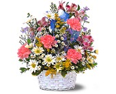 Jubilee Basket in Sunnyvale TX, The Wild Orchid Floral Design & Gifts