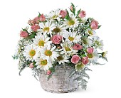 Posy Basket in Stony Plain AB, 3 B's Flowers
