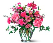 Cheerful Carnations in Bradenton FL, Saddle Creek Florist