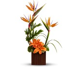 Teleflora's Bamboo Paradise in Nationwide MI, Wesley Berry Florist, Inc.