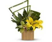 Teleflora's Bamboo Zen in Maple ON, Jennifer's Flowers & Gifts
