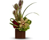 Teleflora's Bamboo Eden in Thornhill ON, Wisteria Floral Design