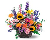Summertime Sensation Basket in Manalapan NJ, Rosie Posies