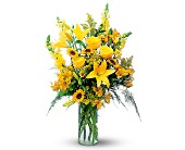 Burst of Yellow in Charlotte NC, Starclaire House Of Flowers Florist