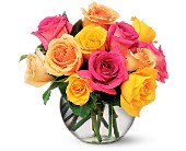 Multi-Colored Roses in Metairie LA, Golden Touch Florist
