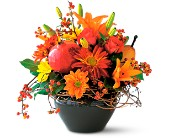 Fresh Fall Magic in Orange VA, Lacy's Florist