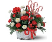 Candy Cane Basket in Pompano Beach FL, Honey Bunch