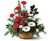 Winter Wonderland Basket in Cincinnati OH, Peter Gregory Florist