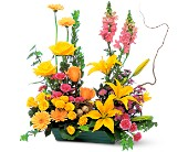Celebrate in Style in Seattle WA, Hansen's Florist