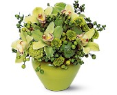 Shades of Green in Nationwide MI, Wesley Berry Florist, Inc.