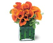 Bronze Callas in Nationwide MI, Wesley Berry Florist, Inc.