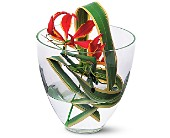 Gloriosa Under Glass in Nationwide MI, Wesley Berry Florist, Inc.