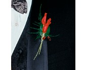 Red Rose Petals Boutonniere in San Antonio, Texas, Pretty Petals Floral Boutique