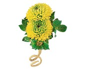 Chartreuse Chrysanthemum Boutonniere in Greenville SC, Greenville Flowers and Plants