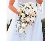 Jacksonville Flowers - White Cascade Bridal Bouquet - The Floral Emporium & Greenhouse