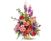 Colorful Comfort in Roselle Park NJ, Donato Florist