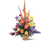 Rainbow Basket in Cocoa FL, A Basket Of Love Florist