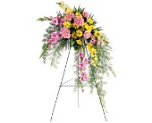 Pastel Crescent Spray in Nationwide MI, Wesley Berry Florist, Inc.