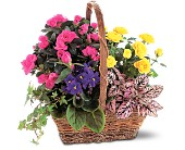 Blooming Garden Basket in Manalapan NJ, Rosie Posies