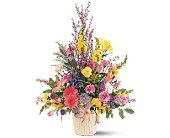 Spring Hope Arrangement in Nationwide MI, Wesley Berry Florist, Inc.