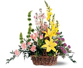 Springtime Basket in Nationwide MI, Wesley Berry Florist, Inc.