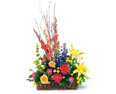 Sunshine Basket in Largo FL, Rose Garden Flowers & Gifts, Inc