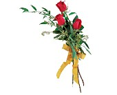 Touch of Red Roses in Nationwide MI, Wesley Berry Florist, Inc.