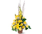 Brighter Blessings Arrangement in Sunnyvale TX, The Wild Orchid Floral Design & Gifts