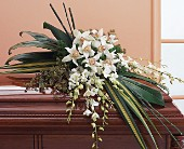 White Orchid Spray in Staten Island NY, Eltingville Florist Inc.