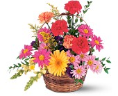 Vibrant Basket Arrangement in Nationwide MI, Wesley Berry Florist, Inc.