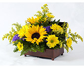 Sunny Memories Music Box in Indianapolis IN, Gillespie Florists