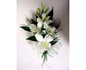 White Dendro Corsage in Raleigh NC, Gingerbread House Florist - Raleigh NC