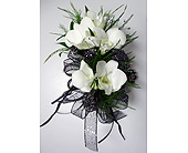 White Dendro Orchid Corsage w/Rhinestones in Raleigh NC, Gingerbread House Florist - Raleigh NC
