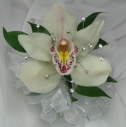 WHITE CYMBIDIUM ORCHID CORSAGE W/ GEMS in Ossining NY, Rubrums Florist Ltd.