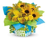 Teleflora's Sunny Birthday Present in Huntley IL, Huntley Floral
