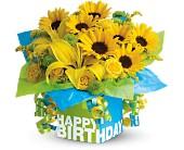 Teleflora's Sunny Birthday Present - Deluxe