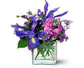 Blues for You - Flower Design in Etobicoke ON, VANDERFLEET Flowers