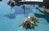Pool Flowers in El Paso, Texas, Debbie's Bloomers