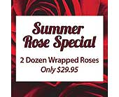 Rose Special in Dallas TX, In Bloom Flowers, Gifts and More