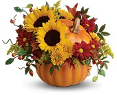 Teleflora's Pretty Pumpkin Bouquet in Portsmouth NH, Woodbury Florist & Greenhouses