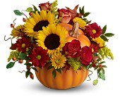 Teleflora's Pretty Pumpkin Bouquet - Deluxe in Eldora IA, Eldora Flowers and Gifts