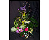 Garden of Elegance in Greensboro NC, Send Your Love Florist & Gifts