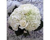 Wedding Bouquet in Dagsboro, Delaware, Blossoms, Inc.