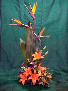 Bird of Paradise & Lillies in Mount Vernon OH, Williams Flower Shop