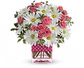 New York Flowers - Teleflora's Polka Dots and Posies - John Street Florist