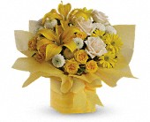 Teleflora's Sunshine Surprise Present in Amherst NY, The Trillium's Courtyard Florist