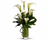 My Fair Lady by Teleflora in Nationwide MI, Wesley Berry Florist, Inc.